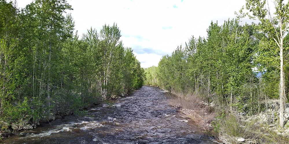 Mission Creek in spring freshet.